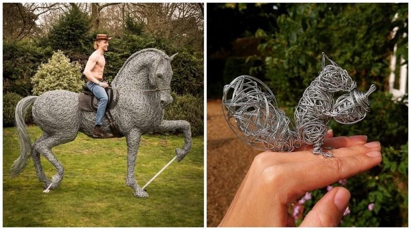 25 удивительных скульптур животных, сплетенных из проволоки (26фото)