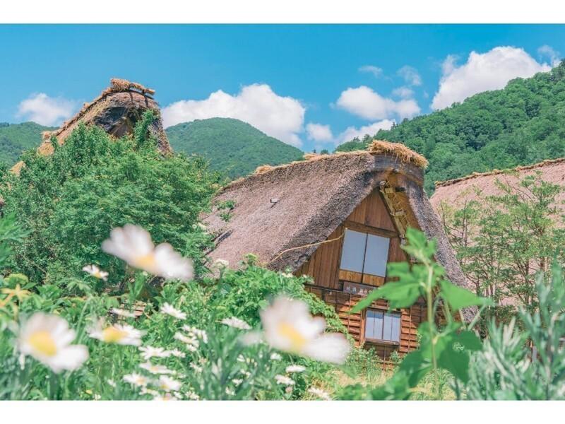 Симпатичные японские сельские пейзажи (26фото)