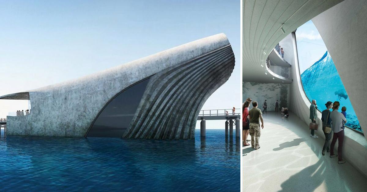 В Австралии построят необычную морскую обсерваторию в форме кита (7фото)
