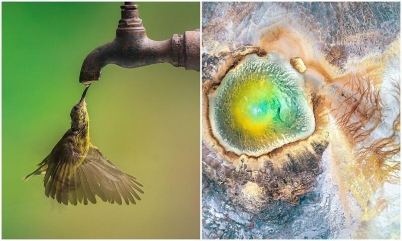30 потрясающих снимков, которые показывают великолепие нашей природы (31фото)