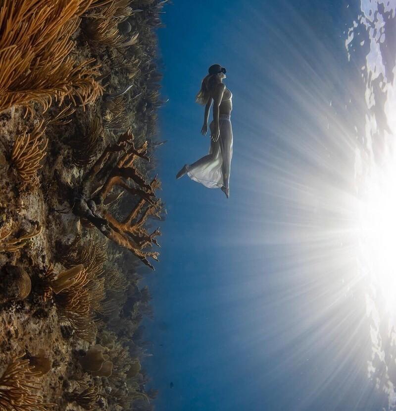 Захватывающие подводные фотографии Джейсона Вашингтона (25фото)