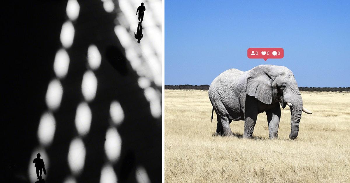Лучшие снимки с конкурса фотографии Fine Art Photography Awards (27фото)