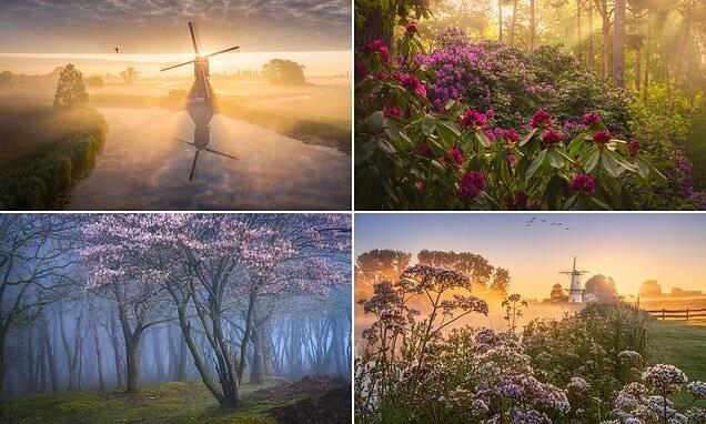 Весенние голландские пейзажи от Альберта Дроса (29фото)