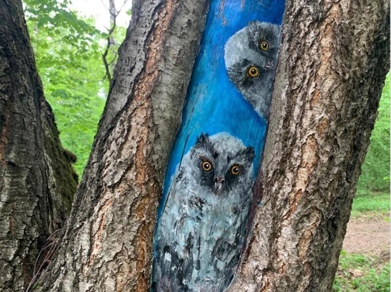 Как рисунок может вылечить дерево? (10фото)