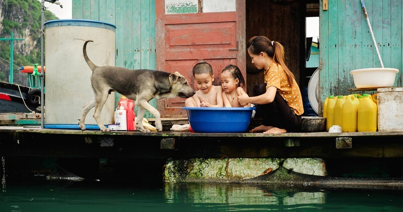 Необыкновенное путешествие из южного Вьетнама в северный в 30 фотографиях (31фото)