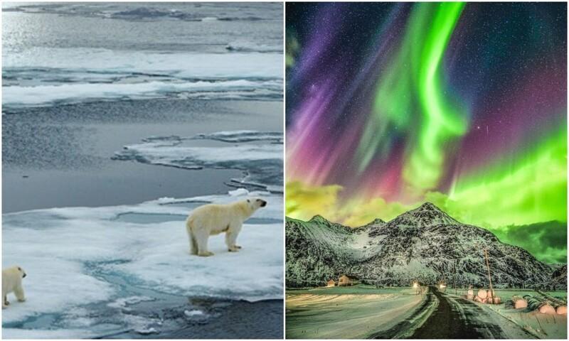 Арктика: пейзажи, от которых захватывает дух (24фото)