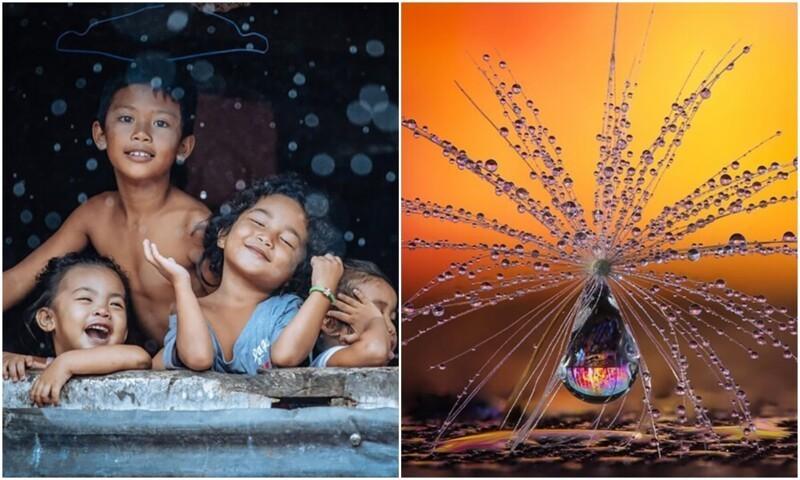 Наш мир прекрасен: 30 лучших фото с конкурса CEWE Photo Award (31фото)