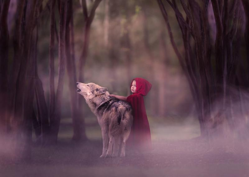 Магия, детские сны и сказочные животные —доброта и волшебство в каждом кадре (31фото)