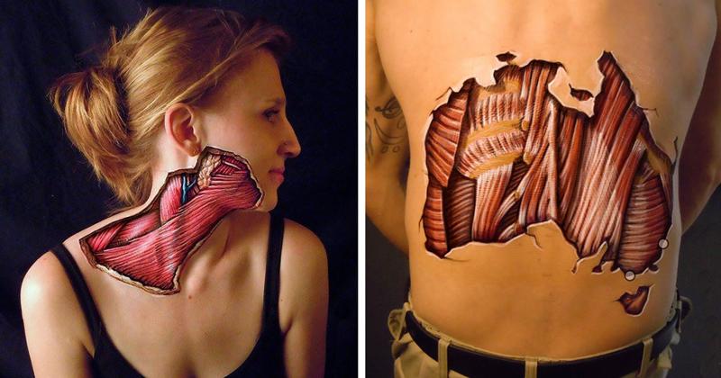 Художник рисует анатомию человека (16фото)