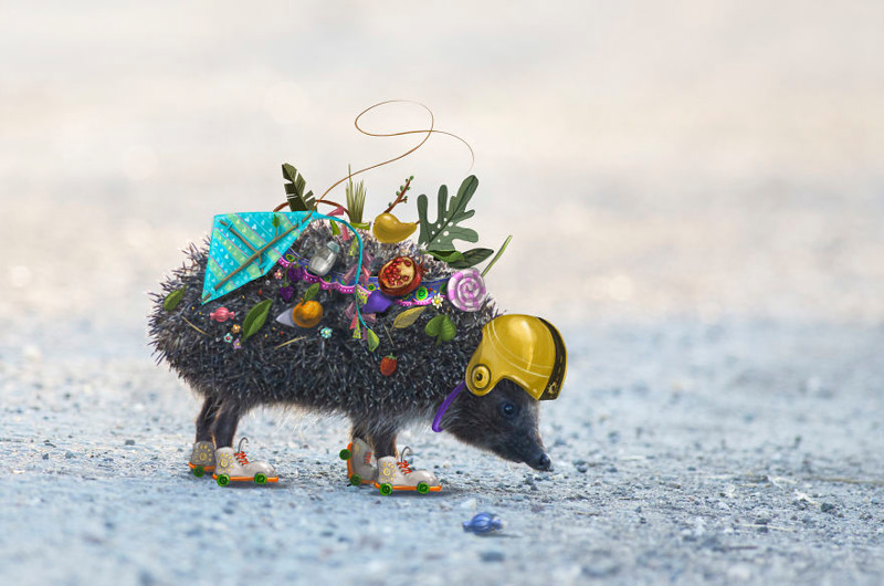 Проект фотографа и иллюстратора, рассказывающий истории диких животных (21фото)
