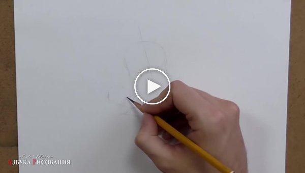 Уроки рисования карандашом. Роза